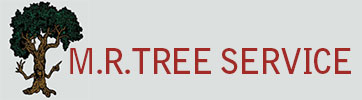 M.R. TREE SERVICE
